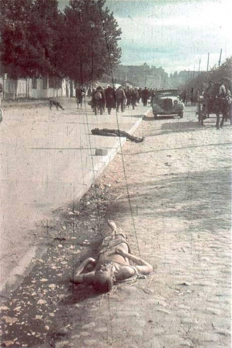 Убитый человек ул. Победы, возможно еврей, который не явился в означенное оккупационными властями место. Киевляне следуют до